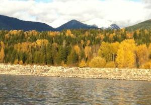 Shoreline of Arrow Lake in the fall