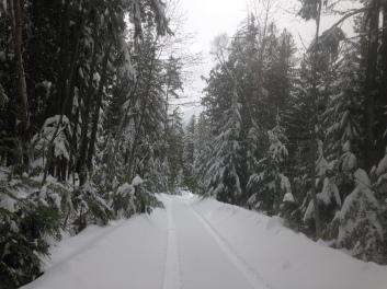 Snowy driveway at Serenity Views